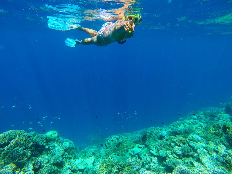 W Retreat and Spa Malediven - Hinter dir! Ein Riffhai!